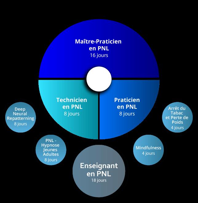 Organigramme Maitre-Praticien PNL